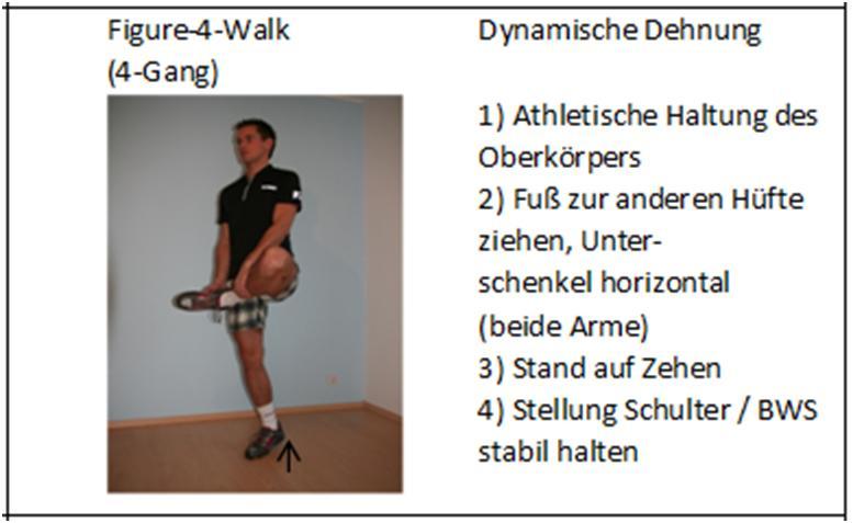 figure4walk